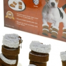 Pets-Shoes-Boxes.jpg